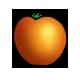Bio-Tomate-2