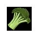 Broccoli-1